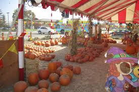 Where Did Pumpkin Patch Originate by Best Pumpkin Patches In Los Angeles For Halloween