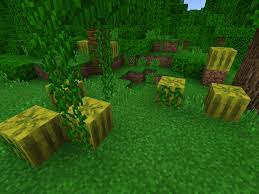 Minecraft Melon Seeds by Battle Of The Climates Taiga Jungle And Desert Mcpe 0 15 X