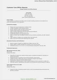 Resume Samples On Customer Service Representative New Customer ... Customer Service Manager Resume Example And Writing Tips Cashier Sample Monstercom Summary Examples Loan Officer Resume Sample Shine A Light Samples On Representative New Inbound Customer Service Rumes Komanmouldingsco Call Center Rep Velvet Jobs Airline Sarozrabionetassociatscom How To Craft Perfect Using Entry Level For College Students Free Effective 2019 By Real People Clerk