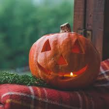 Carved Pumpkins TJ Fox