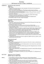 Telecom Manager Resume Sample