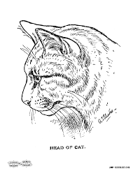 Free Printable Coloring Page Of A Cat From An Antique Book