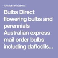 order plants from michigan bulb catalog garden delights tips
