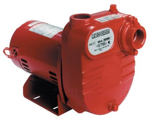 Red Lion RL-S50 45 GPM 1/2 HP Cast Iron Surface Effluent Pump