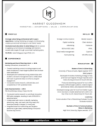 Pro Resume Writer — Resume Design Services Samples | Resume ...