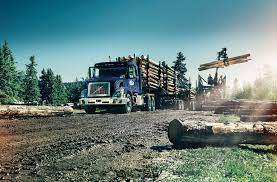 Contact Us | Canada Cartage About Roehl Transport Roehljobs Truck Driving Jobs Cdl Traing Wikipedia Hayes Manufacturing Company Driver Cover Letter Example Writing Tips Resume Genius How Much Do Drivers Earn In Canada Truckers What Are The Best Trucking Companies To Drive For 3 Find Schools Small Medium Sized Local Hiring Rigged Forced Into Debt Worked Past Exhaustion Left With Nothing Dicated Universal Logistics Holdings Inc