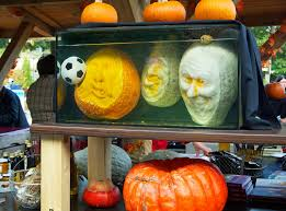 Types Of Pumpkins And Squash by Ludwigsburg Pumpkin Festival And Palace