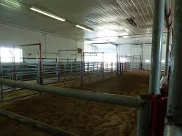 This Is The Calving Barn. It Was Smaller Stalls Down One Side, An ... Around The Farm Scissors Creek Cattle Company The Beutler Family Bench Design Hay Barn Plans Shed Heifer Development Way View Onduty Horse Csavvycom We Know Working Horses Katefairlie Kate Fairlie Kims County Line Cribs Aka Sheds Enduragate Setup Demstration For Calving Youtube Portable Calving Beef Facilities Pinterest Barn 332014 Calving2014 January 2014 Life On A Bc Ranch Slate Architecture Boots Heels Renovated Area