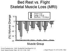 Nasa Bed Rest Study Requirements by Reduced Muscle Mass Strength And Performance In Space Wikipedia