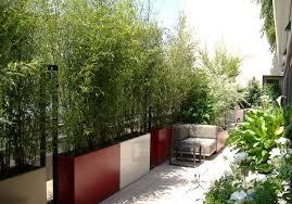 Http Deavita Wp Content Uploads Bambus Deutschland Sichtschutz Balkon Bambus