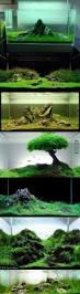 Spongebob Fish Tank Decor Set by Best 20 Cool Fish Tank Decorations Ideas On Pinterest Kid Pool