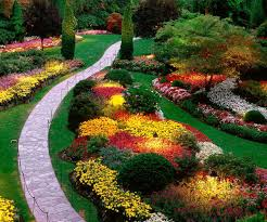 Alluring Landscaping Ideas Together With Home And And Front Yard ... What To Plant In A Garden Archives Garden Ideas For Our Home Flower Design Layout Plans The Modern Small Beds Front Of House Decorating 40 Designs And Gorgeous Yard Nuraniorg Simple Bed Use Shrubs Astonishing Backyard Pictures Full Of Enjoyment On Your Perennial Unique Ideas Decorate My Genial Landscaping