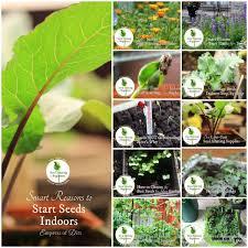 NonGMO Organic Heirloom Garden Seed Bank 2pack