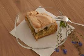 glutenfrei backen rhabarber baiser kuchen sonnensprossen