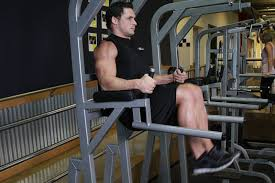 Captains Chair Abs Bodybuilding by Revolutionary Fitness Concepts October 2014