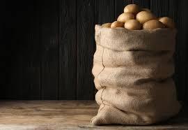 kartoffeln lagern 5 tipps für die richtige aufbewahrung