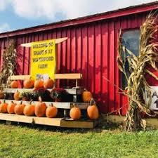 Apple And Pumpkin Picking Maryland by Sharp U0027s At Waterford Farm 37 Photos U0026 14 Reviews Pumpkin