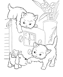 Cat Two Kitty Family Coloring Pages
