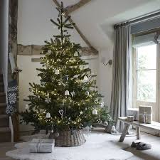 Flocked Christmas Trees Uk by Ultimate Nordmann Christmas Tree U2013 7 5ft The White Company Uk