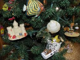 Kinds Of Christmas Trees by Thursday U0027s Thoughts Reflections By Kathy