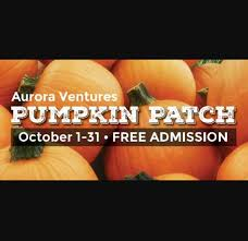 Pumpkin Patch Sacramento by Pumpkin Patch Alameda County Fair Pleasanton Events Yelp