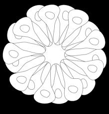 coloriage pot de fleurs