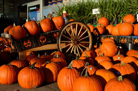 Pumpkin Patch Fredericksburg Va by 5 Halloween Attractions In Virginia To Mark On Your Calendar