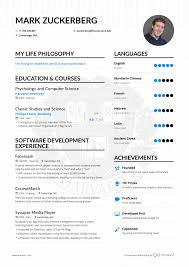 Cover Letter Ceo Resume Example Examples Images Cv Beispiel Job Description For 6