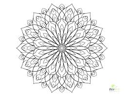 Adult Coloring Pages Flowers Flower