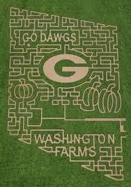 Pumpkin Patch Near Birmingham Alabama by Athens Farm Has Incredible Uga Corn Maze