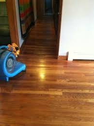 Applying Polyurethane To Hardwood Floors Without Sanding by Harvard Mass 01451 How To Restore Hardwood Floors Without Sanding