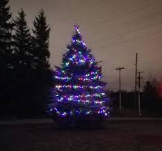 Christmas Tree Shop Sagamore by Daves Auto Body Home Facebook