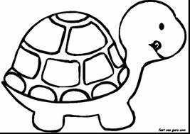 Magnificent Turtle Animal Coloring Page With Book Pages And Pdf