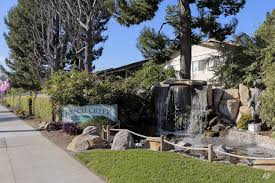 Garden Frove by Garden Grove Ca Apartments For Rent Apartment Finder