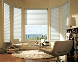 Blind Ideas For Windows Lovely Type Of Bay Window Rods Home And Blinds Living Room Pictures Ro