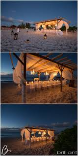 Best 25+ Very Small Wedding Ideas On Pinterest   Outdoor Wedding ... How We Planned A 10k Backyard Wedding In Sevteen Days Best 25 Weddings Ideas On Pinterest Wedding Bohemian Reception Boho Small Reception Photos Miami Intimate Ideas Five Essential Elements That Bring Your Lexi Joe An In Piedmont Annie Hall Haiku Mill Codinator Outdoor Venues Our Beach House Backyard Crystal Beach Texas Galveston Ipirations With Weddings