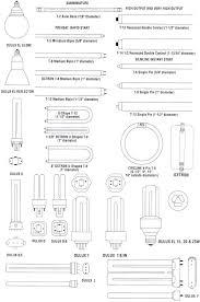 light bulb fluorescent light bulbs sizes inspiring ideas