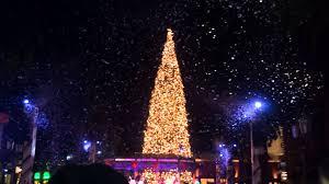 20141115 Fashion Island Christmas Tree Lighting Ceremony