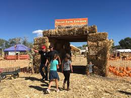 Pumpkin Patch Reno by Reno Pumpkin Farm Opens For Operation For Fall And Halloween