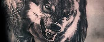 Realistic Wolf Tattoo Designs For Men