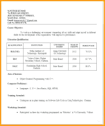 Professional Resume Formats Format Job Application Free Download Interview For Campus Good Imagine And Best