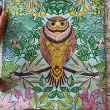 In Our Non Stop 24 7 Culture Enchanted Forest And Many Other Colouring Books Like It Allow Us A Few Moments Of Quiet Solitude Time To Be At Utter