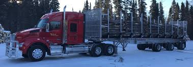 Kivi Bros Trucking | Truckers Review Jobs, Pay, Home Time, Equipment