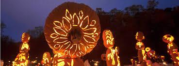 Great Pumpkin Blaze by Killer Pumpkin Arrangements At The Great Jack O U0027lantern Blaze