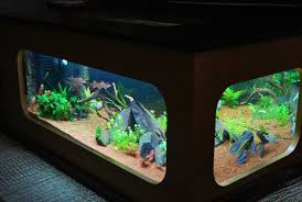 bon coin aquarium occasion table basse aquarium le bon coin le bois chez vous