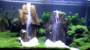 Aquascape 2 Air Terjun (waterfall Aquascape) - YouTube Aquascape Waterfall Tjupinang Part 2 Youtube Modern Aquarium Design With Style For New Interior Aquascape Low Cost My Waterfall Nhaquascape Pro Pondwater Feature Pumpschester Rockingham Diy Pondless Waterfallsbackyard Landscape Ideasmonmouth Nj Aqualand Nighttime Winter By Inc Photo Projectswarwickorange Countynynorthern Its Called Strenght Of A Thousand Stone Backyard Waterfalllow Maintenance Water Just Add And Patio Amazoncom Kit 3 W Free Led 3light