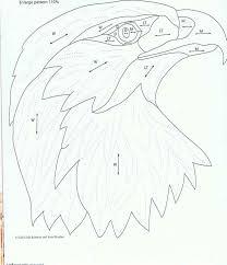 bald eagle demonstration wood pinterest bald eagle eagle