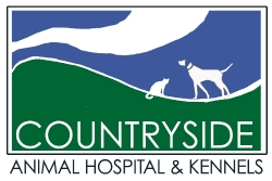 countryside animal hospital animal hospital and kennels where knowledge and compassion meet