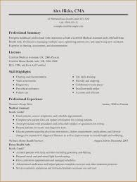 Writing A Resume Summary Examples For