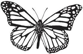 Fresh Monarch Butterfly Coloring Pages
